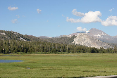 Another look at Toulumne Meadows.