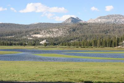 Toulumne Meadows.