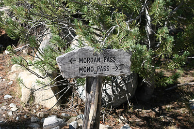 The junction to go to Morgan Pass (near gem lakes) or Mono Pass.