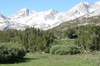 A nice mountain meadow.