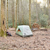 Campsite at Licklog