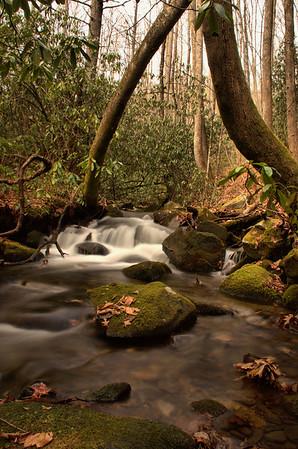 Forney Creek to Bear Creek 11/25/14