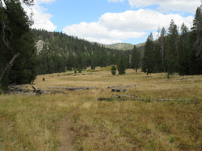 As my trail left Long Canyon and the private property, I had this look back at that meadow before ...
