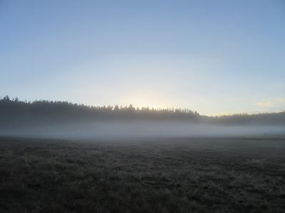 The still wet meadow produced some fog the next morning.