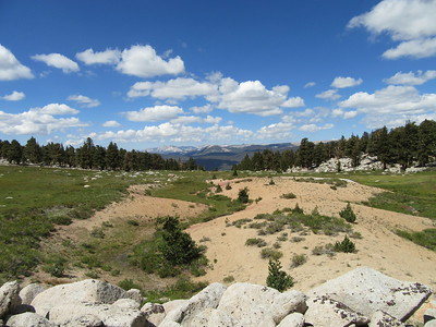 Soon there was this meadow with a damp stream running down into Big Whitney Meadow, then ...