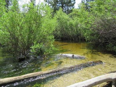 ... wading across Fish Creek.
