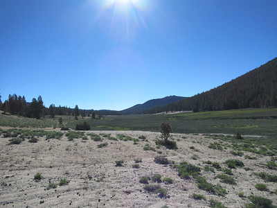 The next morning I hiked east, following the cattle trail along Mulkey Meadow while ...