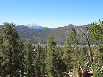 ... Trail Pass (10,500') where I looked down on Mulkey Meadow below and at snowy Olancha Peak in the distance.