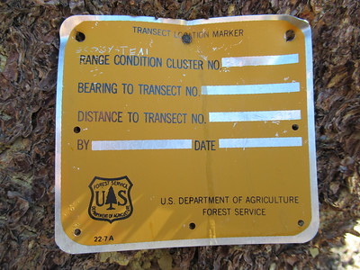 I noticed this over in the trees from a study started in 1992 of something (see https://en.wikipedia.org/wiki/Transect ), probably regarding cattle, the meadow and the creek since that has been a long running issue.  (see http://tinyurl.com/y48t6hbe )