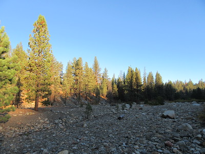 ... this look back over the flat toward my camp in the still shaded and cold area in the trees.