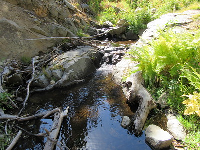 ... South Mountaineer Creek, the only two sources of water between Summit Trailhead and Maggie Lakes.