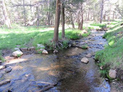 ... up the trail to the junction at Long Canyon Creek (8,480'), ...