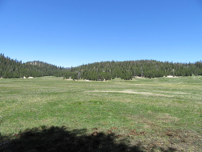 ... my first look at Casa Vieja Meadows (8,310') where ...