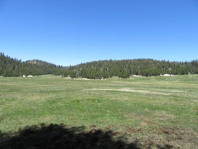 ... my first look at Casa Vieja Meadows (8,310') where ...