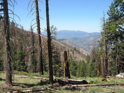 ... getting this view over some of the burn area from last year's Indian Fire and ...