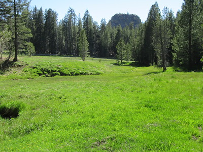 ... Redrock Meadows (8,626').