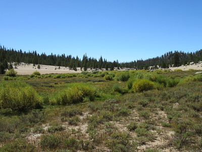 ... Mulkey Meadow as I hiked southwest across it to ...