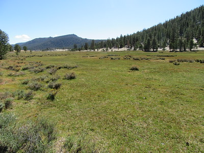 ... I zipped past Bullfrog Meadow (9,400'), headed into ...