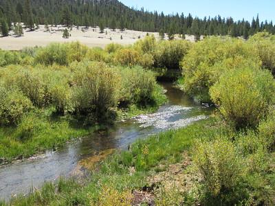 ... Mulkey Creek.