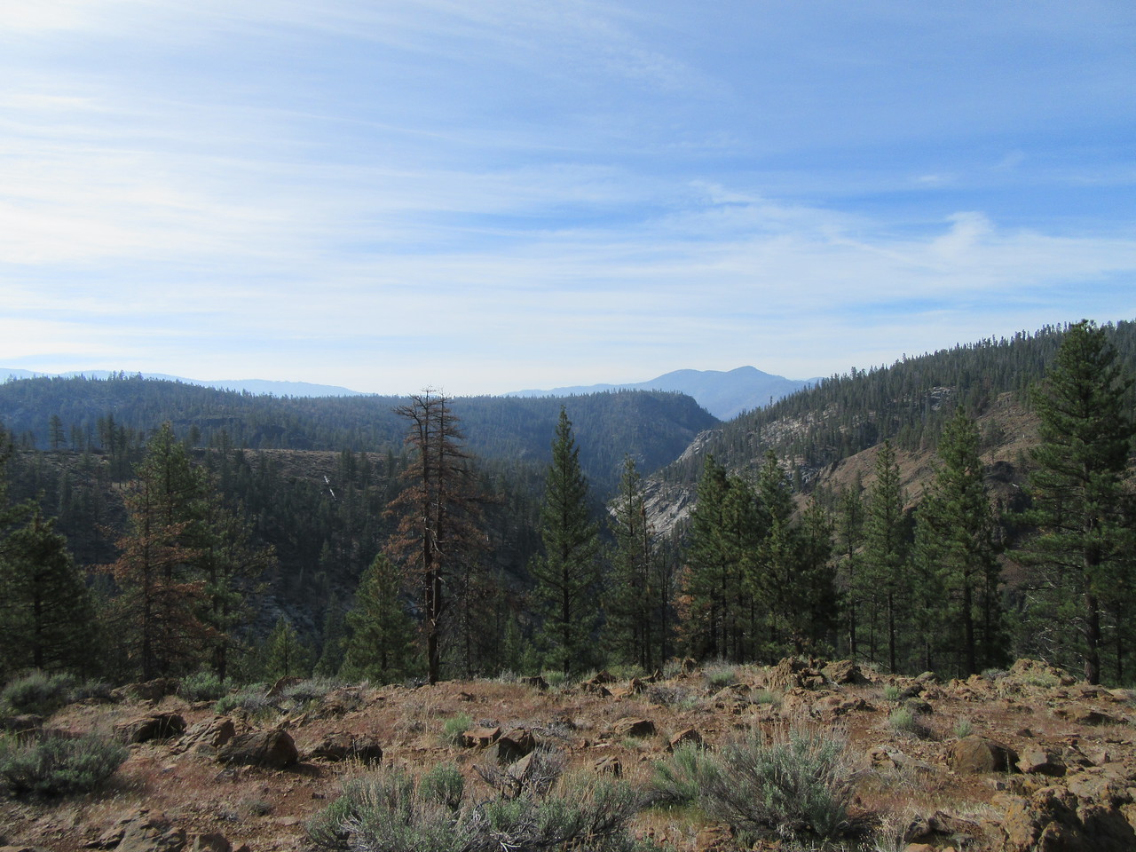 As I again neared the Little Kern River, I had this view south over the winding canyon it flows down, shortly before ...