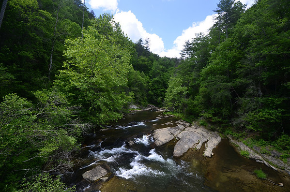 Gorges State Park / Toxaway Game Land 5/2012