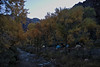 Bright Angel Campground alongside Bright Angel creek...