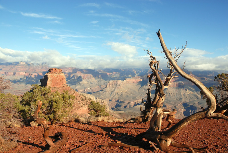 Check out my homepage and go to my Grand Canyon trip 5 years ago and you will see some pictures taken in the same location...just like this one. :-)