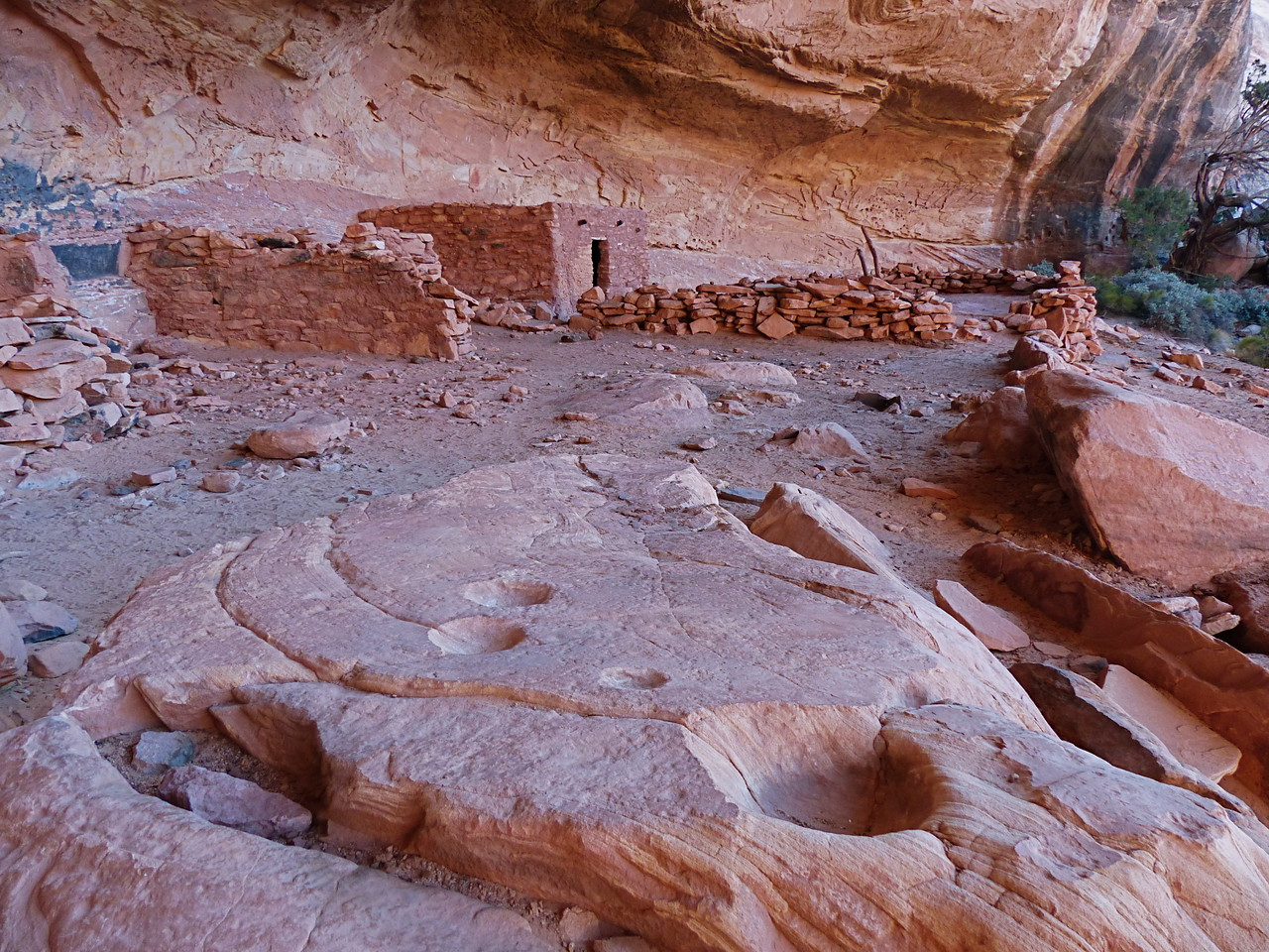 On the morning of Day 5, our last day in the canyon, we checked out Perfect Kiva Ruin.
