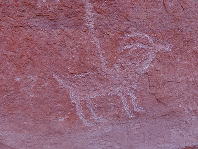 Petroglyphs at Turkey Pen Ruin.