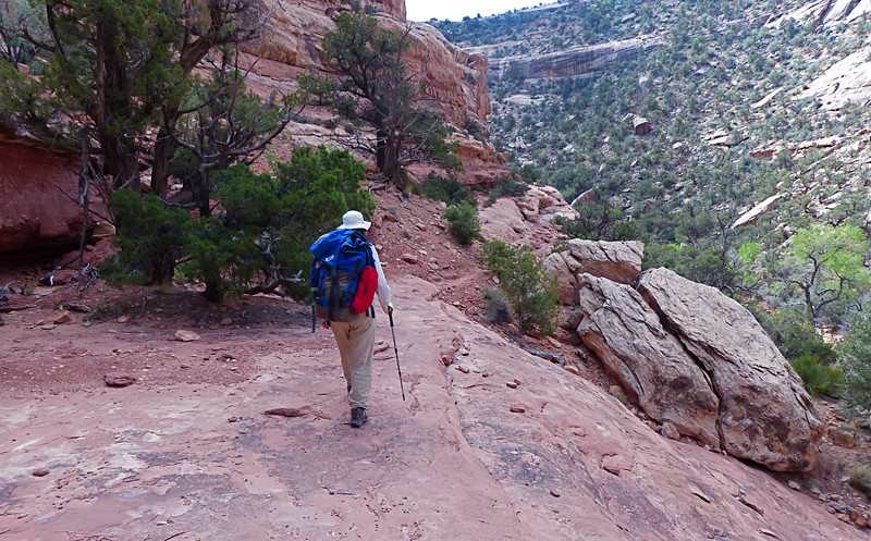 Walking up Bullet Canyon on Day 5.