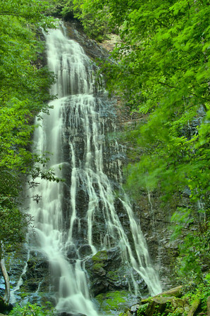 Great Smoky Mountains National Park 5/2014