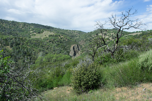 Looking towards Pacheco Falls