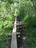 boardwalk_trail