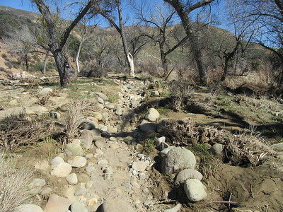 ... gouging out the previously sandy trail to the creek crossing into a rock filled rut.