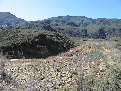 About halfway down to Bear Creek, a look back upstream over Sespe Creek; a recently attained steady flow that ...