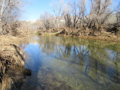 Compared to the prior five years of drought, there was a lot of water flowing at the first Sespe crossing from the trialhead, and ...