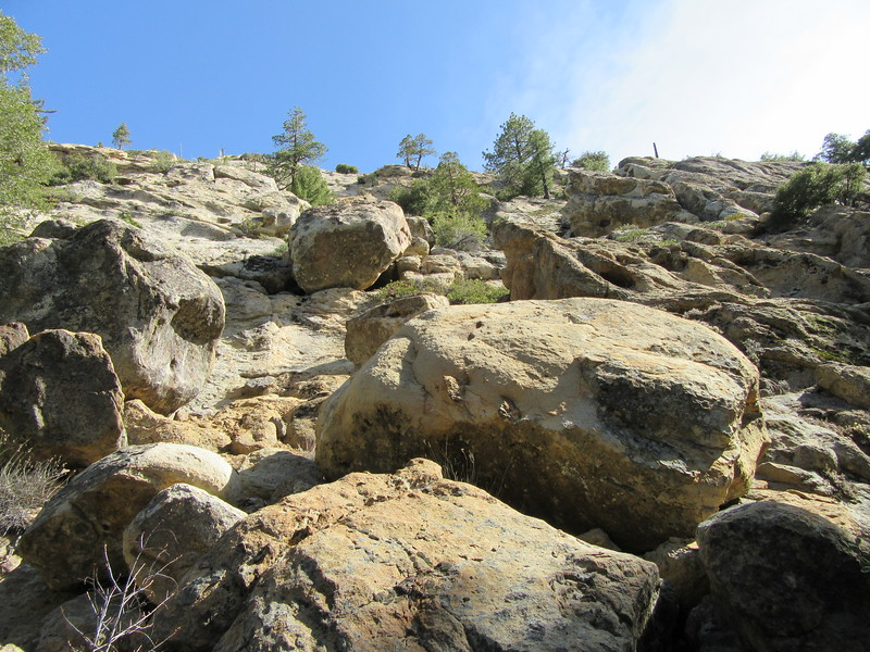 We had this look up the canyon wall not too long before ...