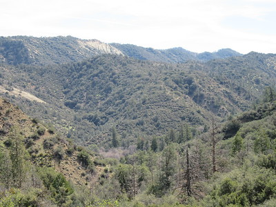 ... turning around to look over some of the Reyes Creek drainage and see the switchbacks we would soon climb to get out of it.