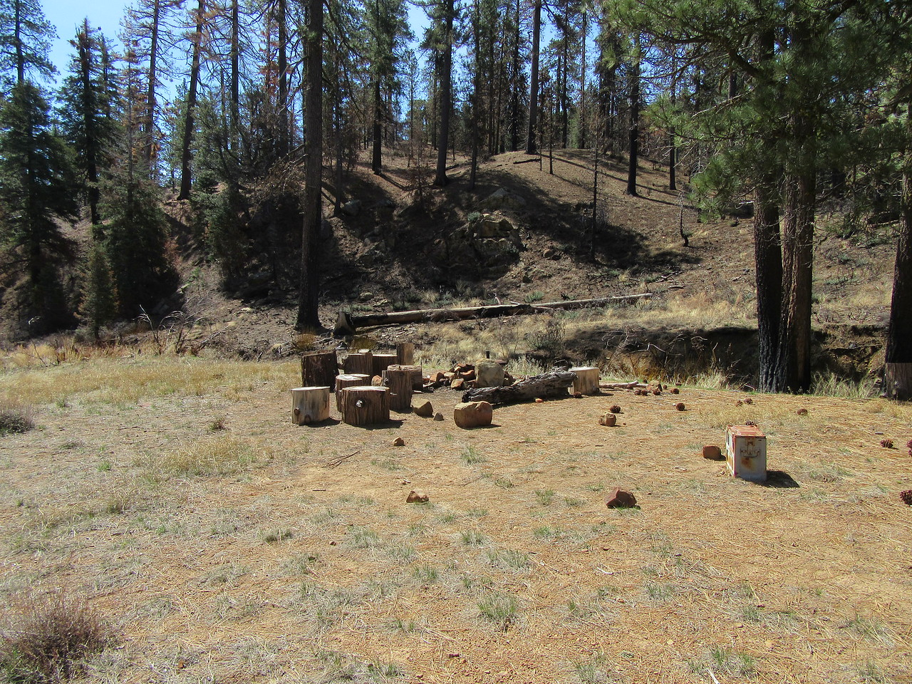 ... Haddock Camp (6120') where some sawyers have cut down hazard trees and made some nice wilderness chairs for campers.  After a break ...