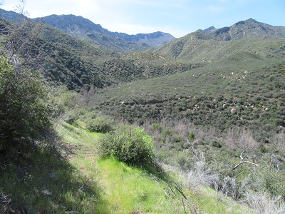 ... our first look down into the Timber Creek drainage where ...