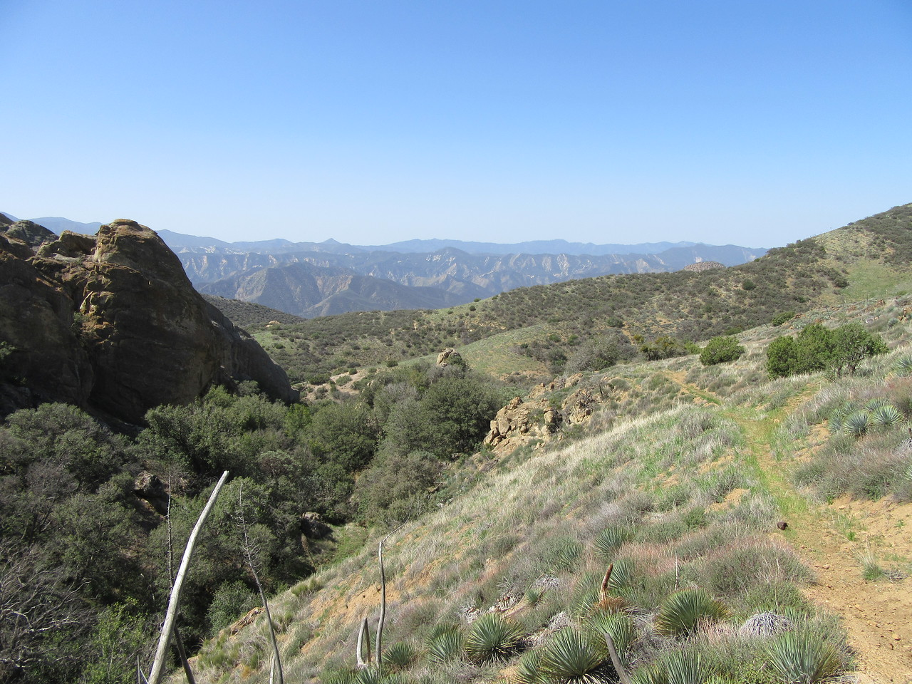 ... before turning to begin our steep drop to Sycamore Camp along the Sisquoc River.