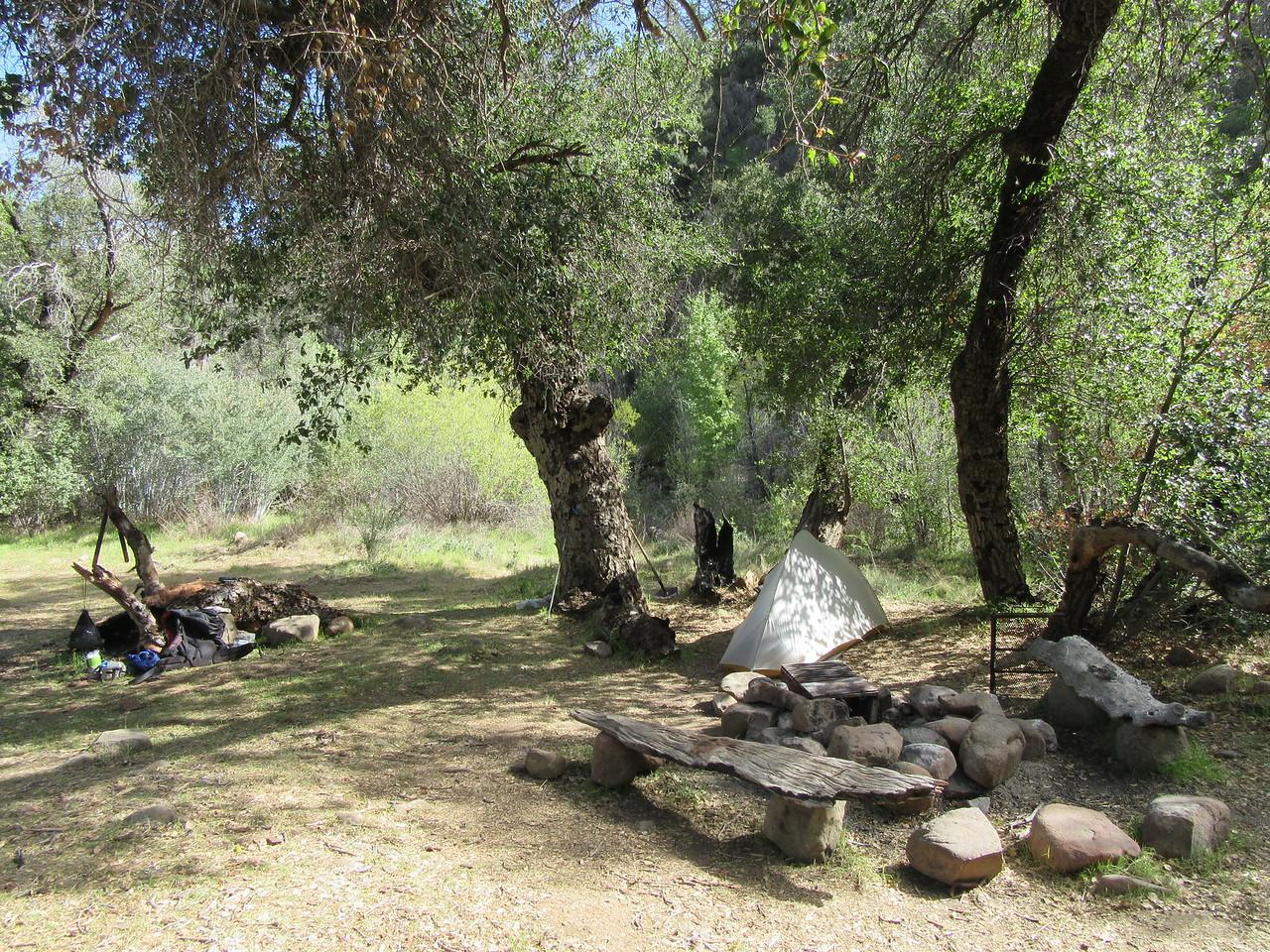 Soon I arrived at Heath Camp (3422') where ...