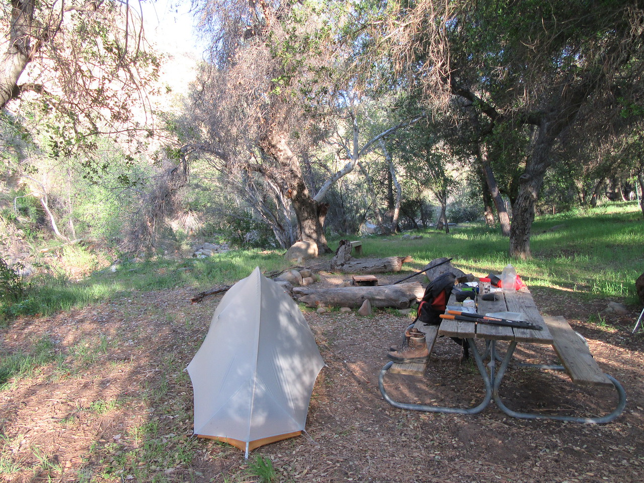My camp at South Fork Station.