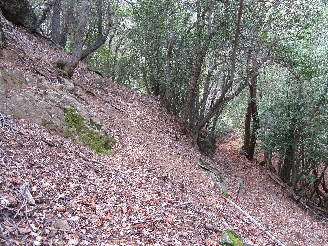 Also from Lower Bear, I started up a lengthy set of switchbacks that ...