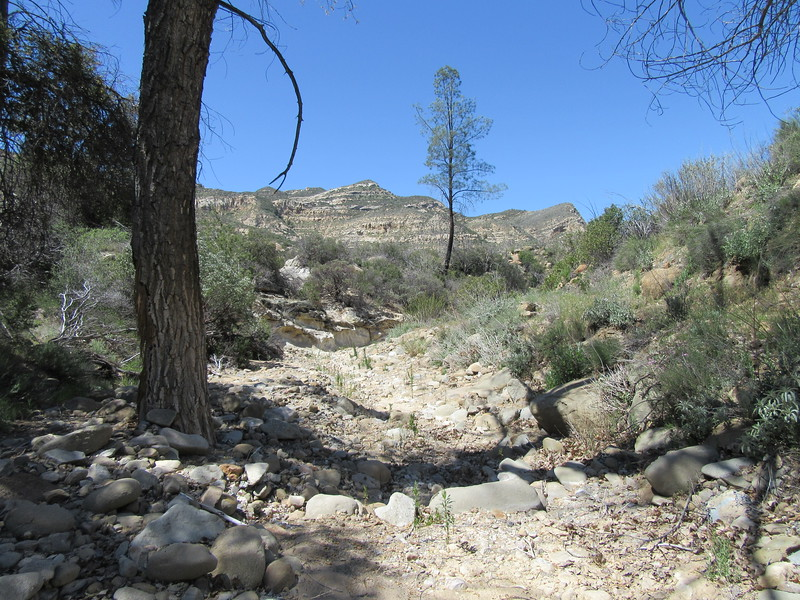... first I had to go a ways up Sweetwater Canyon at its trail junction (2428') before ...