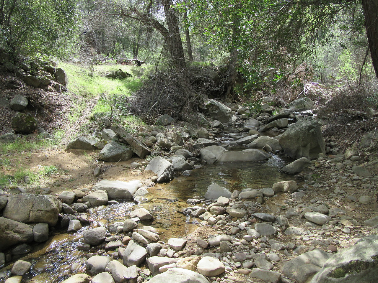 ... watching the Sisquoc shrink as I hiked upstream, ...