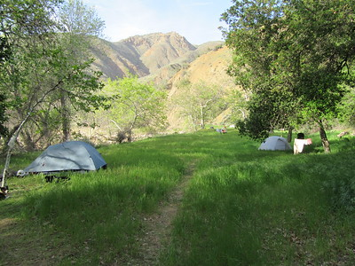 ... there was beautiful Sycamore Camp (2011').  The occasion was a week of volunteer trailwork on the Sisquoc Trail ...