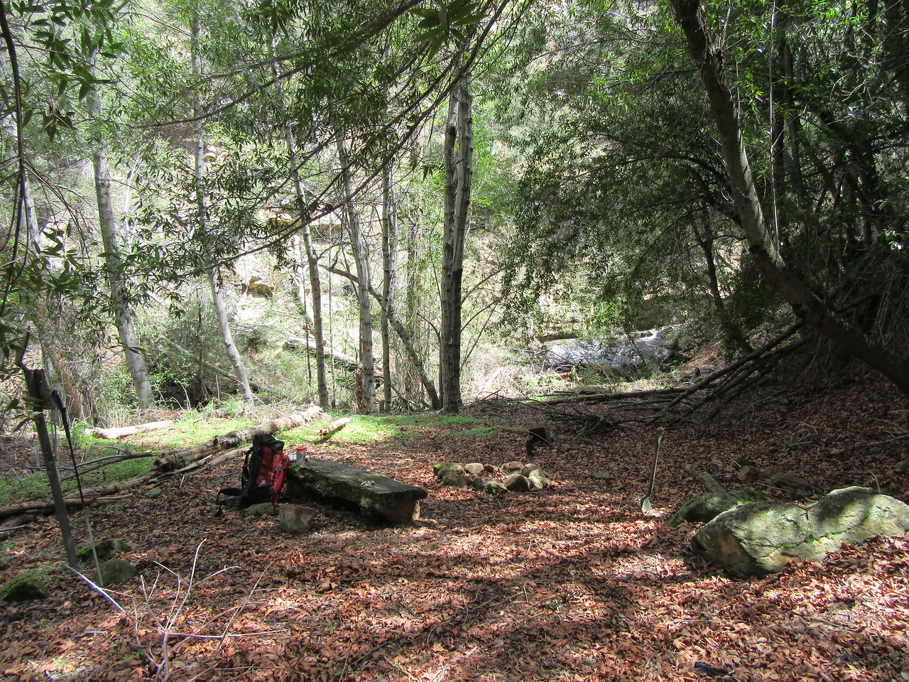 ... Lower Bear Camp (4744') for lunch.  Lower Bear is cool, damp and shaded, but ...