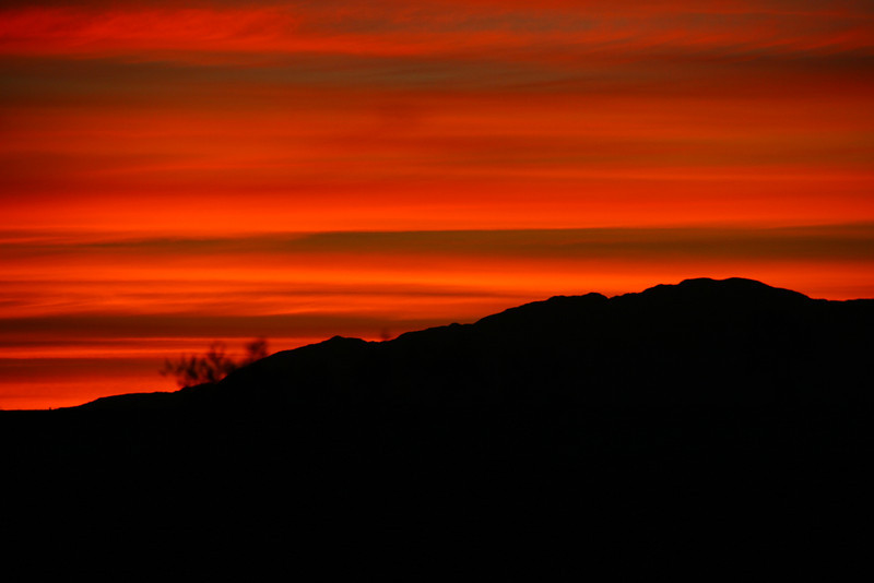 Ron and I camped at the same spot near Ocotillo on the drive home. We enjoyed the sunrise.