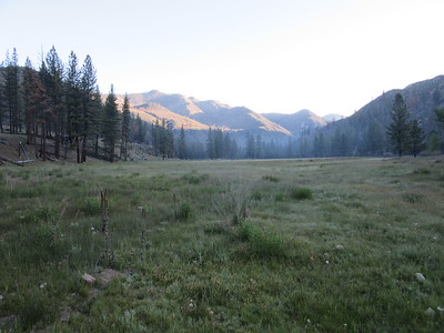 The next day, an early morning look toward the north end of Kern Flat.